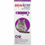 Budget Pet Care   Bravecto Spot-On for Large Cats 13.8 lbs – 27.5 lbs   Bravecto is an advanced tick and flea formula for cats. It effectively kills all existing fleas and ticks on cats.