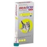 Budget Pet Care   Bravecto Plus for Small Cats 112 mg (2.6 to 6.2 lbs) Green   Bravecto Plus is a topical solution that effectively prevents heartworms, treats gastrointestinal nematodes, and eliminates fleas and ticks in cats.