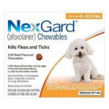 Budget Pet Care | Nexgard Chewables for Small Dogs 4-10lbs (Orange) 11mg | Nexgard is one of its kind oral beef flavored soft chewable that is effective against adult fleas thereby preventing flea infestations.